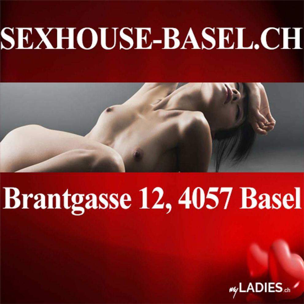 Sexhouse Basel / Bild 1
