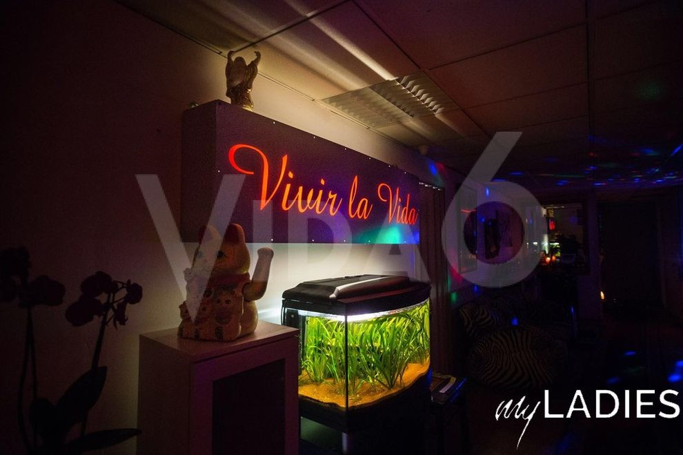 Vida6 / Bild 8