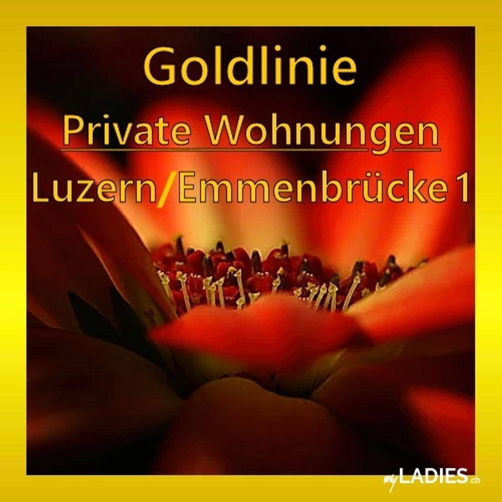 GOLDLINIE - Luzern 1 / Bild 12